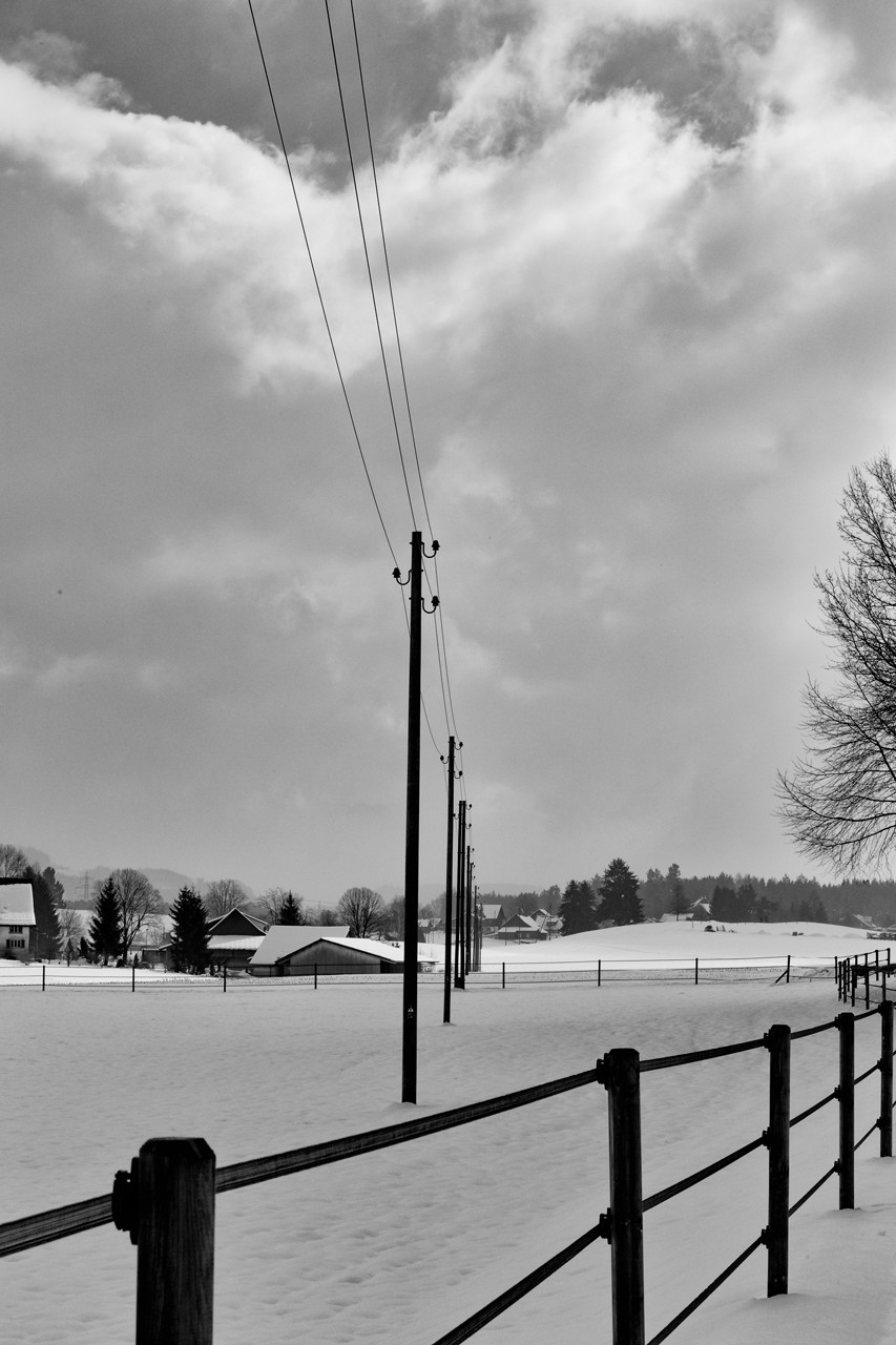Ried-Winter_2013-02-17_6-1