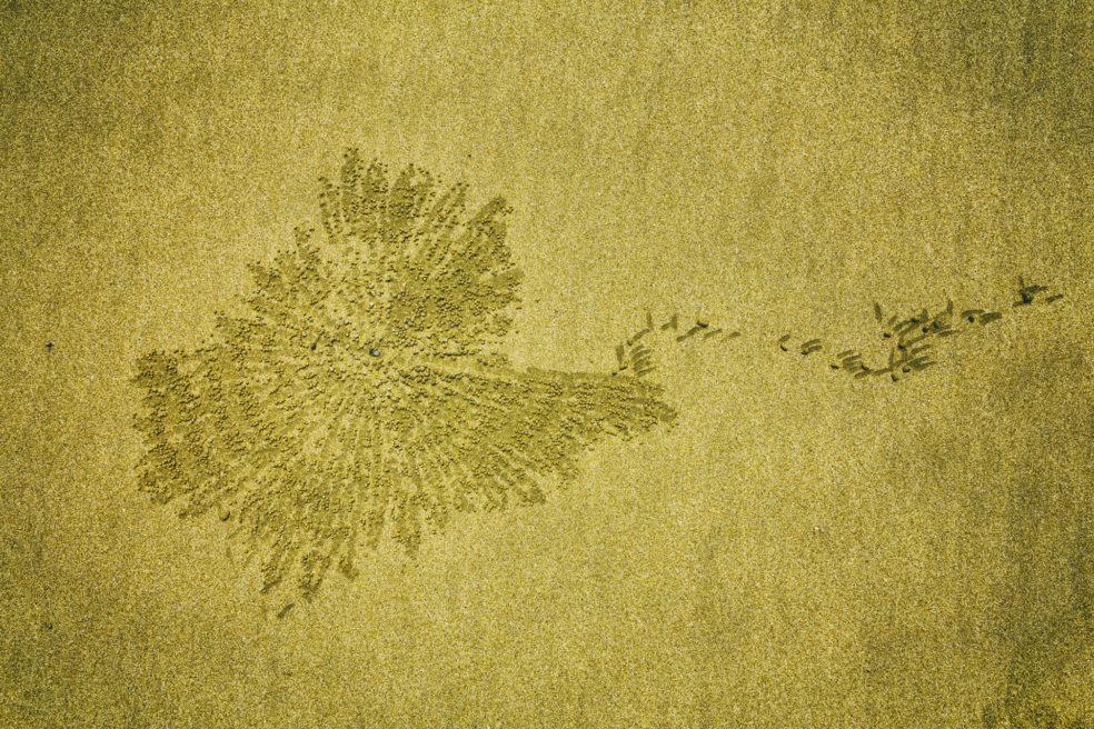 Sand Art – die vergängliche Kunst im Sand
